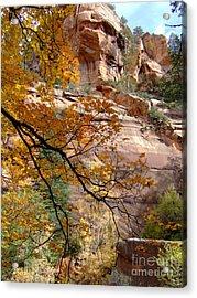 Fall Colors 6497 Acrylic Print