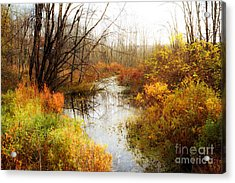 Fall Colors  Acrylic Print by A New Focus Photography