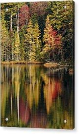 Fall Colors Along Shoreline Of Irwin Acrylic Print
