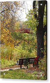 Fall Colors Acrylic Print by Cendrine Marrouat