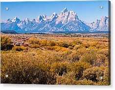 Fall Colors In The Tetons   Acrylic Print by Lars Lentz