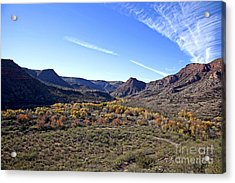 Fall Colors In The Verde Canyon Along The Verde River In Arizona Acrylic Print