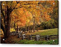 Fall Colors, Asheville, North Carolina Acrylic Print