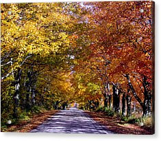 Fall Colors Near Sister Bay Acrylic Print by David T  Wilkinson