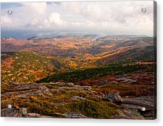 Fall Colors Of Acadia 6656 Acrylic Print by Brent L Ander