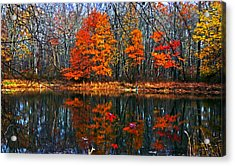 Fall Colors On Small Pond Acrylic Print