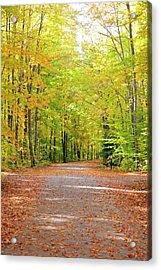 Fall Colosr In Hiawatha National Forest Acrylic Print