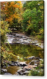 Fall Creek Acrylic Print by Christina Rollo