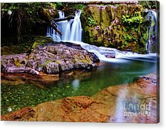 Fall Creek Oregon Acrylic Print