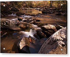 Fall Creek Acrylic Print by Rebecca Hiatt