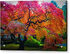 Fall Crowning Glory  Acrylic Print