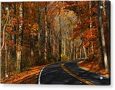 Acrylic Print featuring the photograph Fall Curves by Andy Lawless