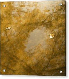 Fall Dream Mirror Acrylic Print