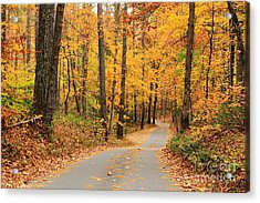 Acrylic Print featuring the photograph Fall Drive by Geraldine DeBoer
