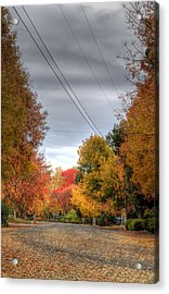 Fall Drive Acrylic Print by Ren Alber