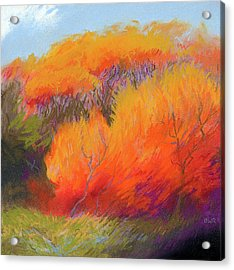 Fall Fire Acrylic Print by Bruce Richardson