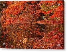 Fall Flavor Acrylic Print by Lourry Legarde