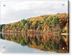 Fall Foliage At Walden Pond Acrylic Print by John Sarnie