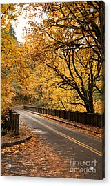 Fall Foliage On The Highway Acrylic Print by Cari Gesch