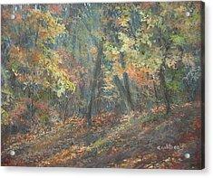 Fall Forest Acrylic Print by Elizabeth Crabtree