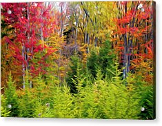 Fall Forest Foliage Acrylic Print by Lanjee Chee