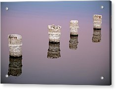 Fall Forward At Sunset Acrylic Print by Scott Campbell