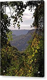 Fall Frames The Canyon Acrylic Print