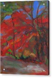 Fall Fusion Acrylic Print by Susan Hanlon