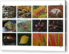 Fall Greetings Acrylic Print by Juergen Roth