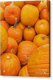 Fall Harvest Acrylic Print by ELDavis Photography