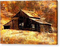 Fall In Country Acrylic Print