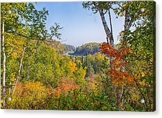 Fall In Gooseberry State Park Acrylic Print