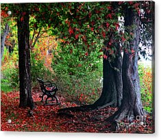 Fall In Henes Park Acrylic Print