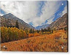 Fall In Lundy Canyon Acrylic Print by Lynn Bauer