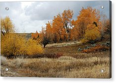 Fall In Montana Acrylic Print by Larry Stolle