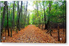 Fall In New England Acrylic Print by Stephen Melcher