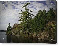 Fall In Northern Ontario Acrylic Print