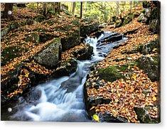 Fall In The Adirondacks Acrylic Print