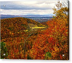 Fall In The Air Acrylic Print by B Wayne Mullins
