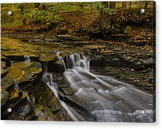 Fall In The Metroparks Acrylic Print