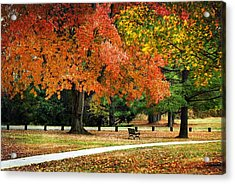 Fall In The Park Acrylic Print by Christina Rollo