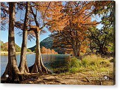 Fall In The Texas Hill Country Acrylic Print