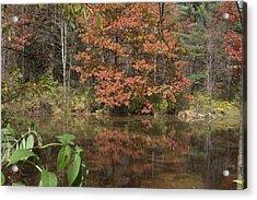 Fall In Upsrate Ny Acrylic Print by Edward Kocienski