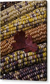 Fall Indian Corn With Leaf Acrylic Print