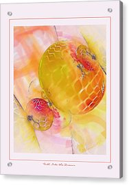 Fall Into The Dream Acrylic Print by Gayle Odsather