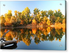 Fall Lake Acrylic Print by Alicia Knust