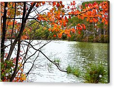 Fall Landscape 1 Acrylic Print by Lanjee Chee