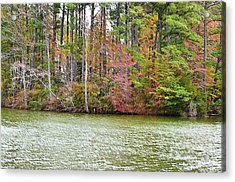 Fall Landscape 2 Acrylic Print by Lanjee Chee