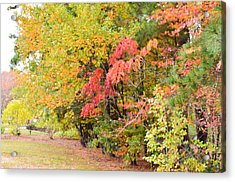 Fall Landscape 3 Acrylic Print by Lanjee Chee