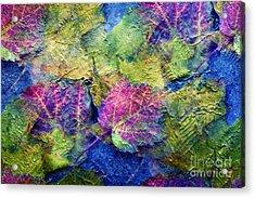 Fall Leave Abstract Acrylic Print by Judy Palkimas